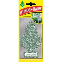 WUNDER-BAUM - Eucaliptus